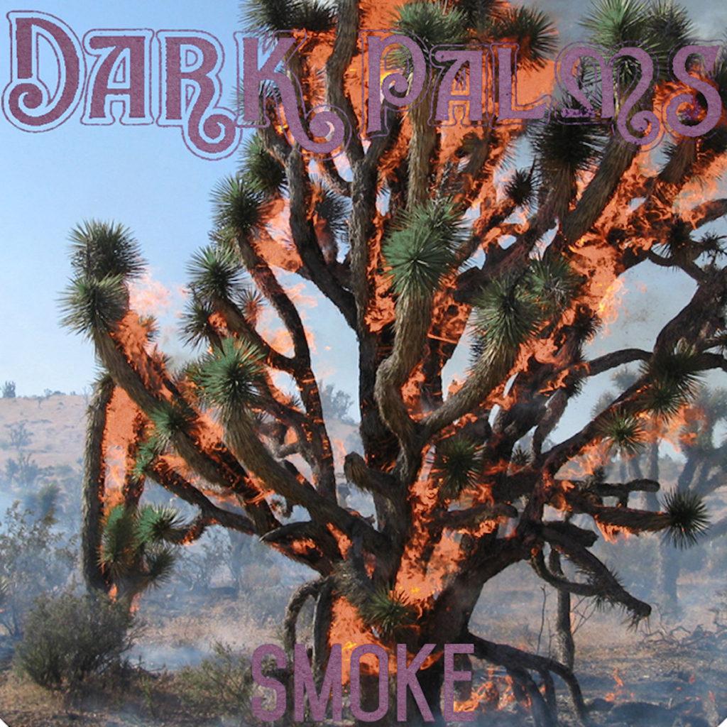 Dark Palms Cover